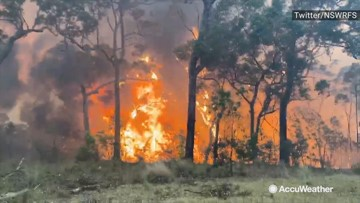 Emergency warnings issued as wildfire threatens homes