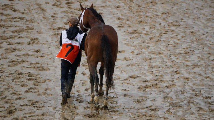 Maximum Security walked off track at Kentucky Derby Horse Racing