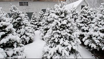 Steady subzero temperatures leave several states frozen