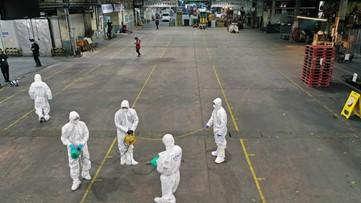 South Korea declares Daegu a 'special zone' over virus cases