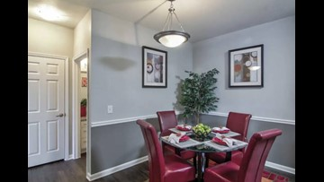 What apartments will $900 rent you in Hyde Park, this month?
