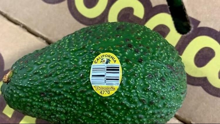 Recalled avocado
