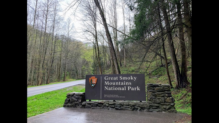 Great Smoky Mountains National Park (Photo by Darren Murph/The Points Guy)