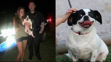 Police officer helps teen find missing dog by driving her around for hours letting her use his megaphone