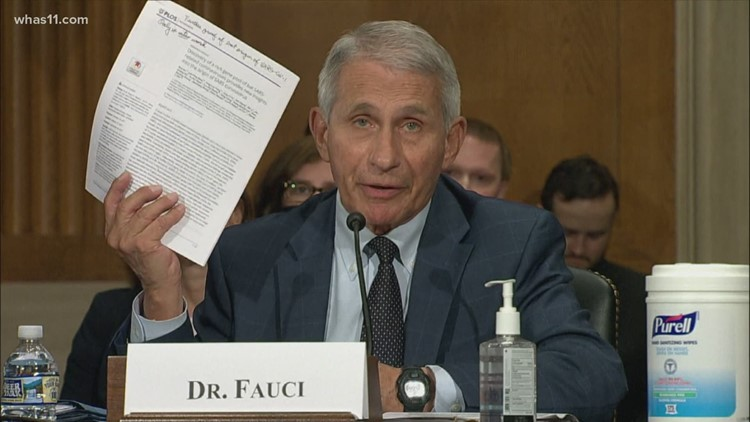 'If anybody is lying here, senator, it's you': Fauci, Rand Paul argue at COVID hearing