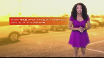 Summer Safety: Key Reminders About Heat and Cars (FCL June 24)