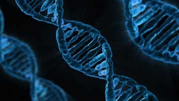 Your DNA could help solve a crime