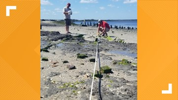 Archaeologists find two shipwrecks on the jetties in Mayport