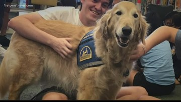 Monday Motivation: This pup spreads love and comfort at the Ronald McDonald House