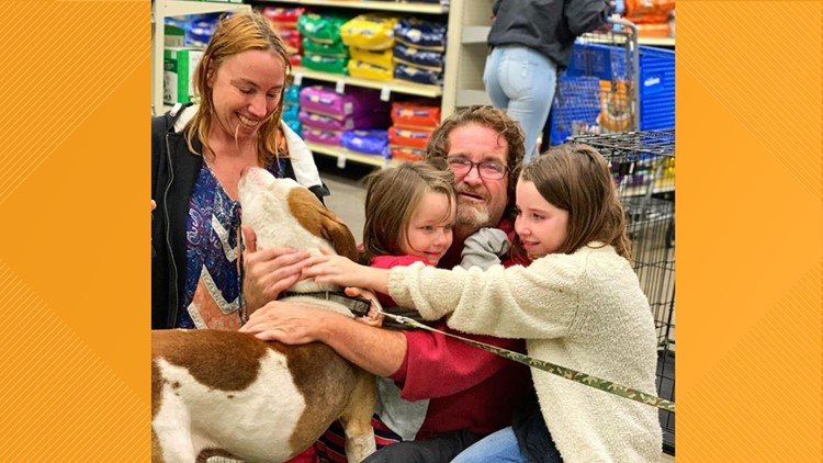 Lost dog reunited with family