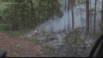 Yellow Bluff Wildfire grows to 600 acres, 55 percent contained