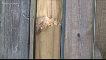 JSO not liable to fix woman's fence damaged during pursuit