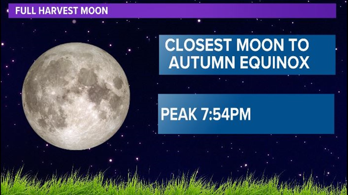 Full Harvest Moon expected to 'wow' this week