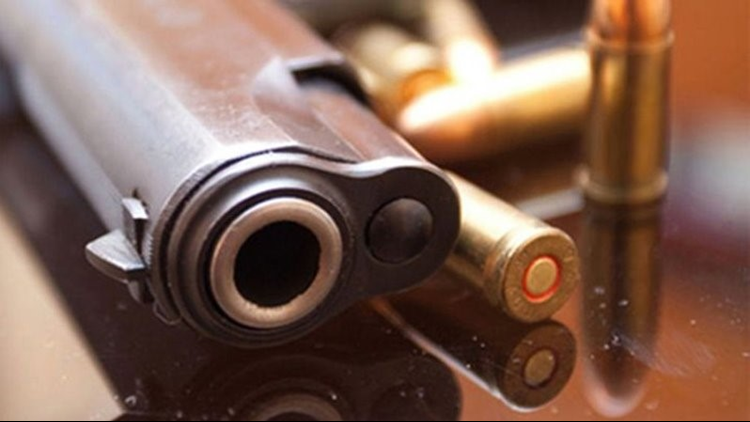 NY state passes legislation preventing domestic abusers from owning guns
