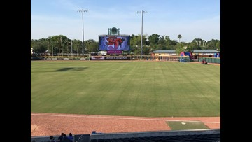Back to the Minors: Shrimp, Sharks, highlight busy weekend at Sports Complex