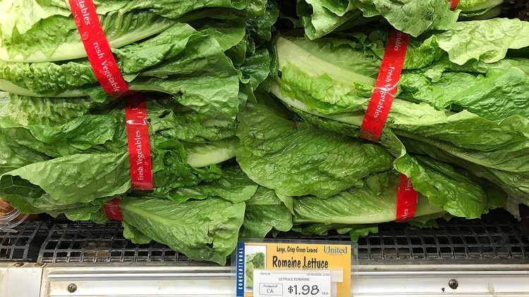 Metro health officials confirm E. coli case linked to lettuce