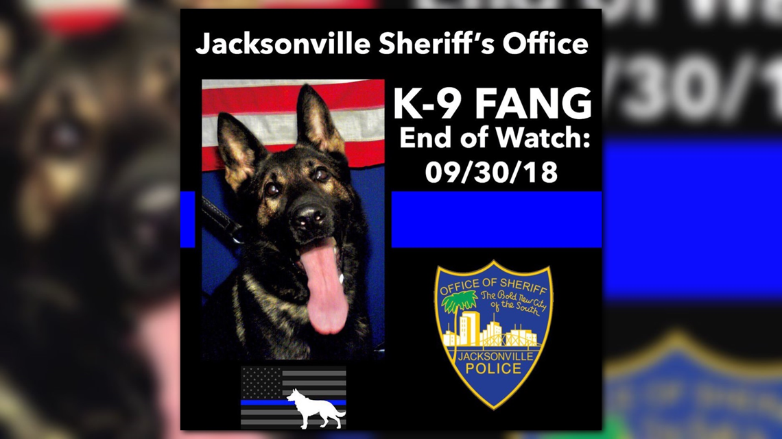 JSO K-9 shot, killed during carjacking pursuit; suspected carjacker  arrested | firstcoastnews.com