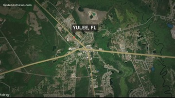 Deputies: 17-year-old Yulee girl charged with child abuse after dog drags baby