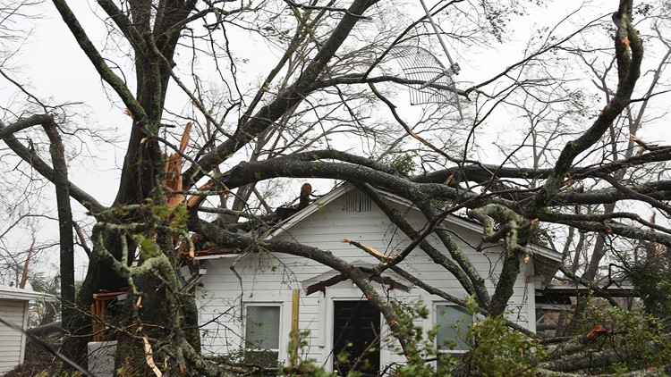 A Sheriff's official confirms one Florida Panhandle man was killed at home by a falling tree during Hurricane Michael's passage.