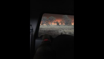 St. Johns County woman has sister who survived California fires