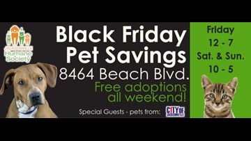 Jacksonville Humane Society offering free pet adoptions all weekend starting Black Friday