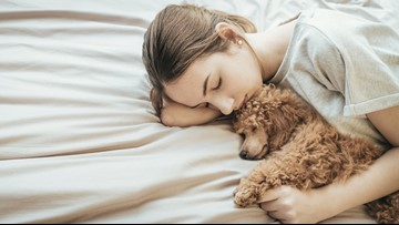 Study: Women get better sleep with a dog on the bed