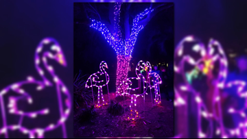 ZOOLights is back this week at the Jacksonville Zoo and Gardens!