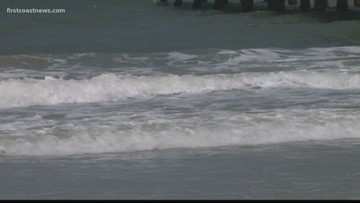 Shark expert says warmer water could draw sharks closer to shore