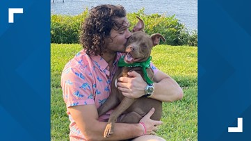 Jaguars' kicker Josh Lambo: 'I will pay for half of the adoption fee... all of your dog food for the next 6 months'