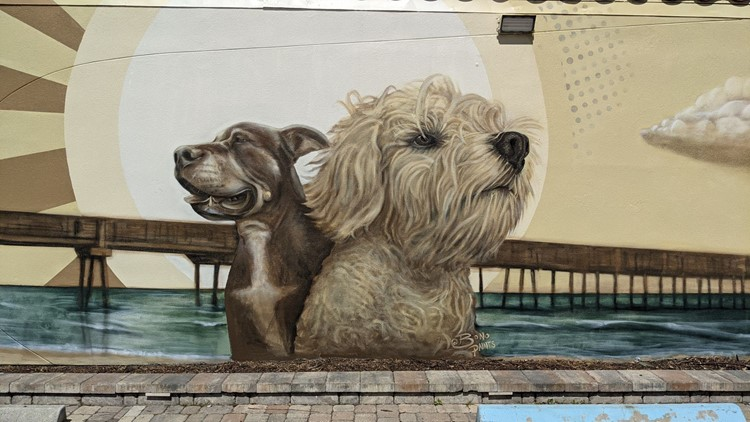 Dog featured in Jax Beach mural available for adoption