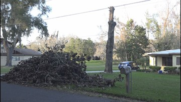 Jacksonville woman fighting contractor to remove tree branches from yard