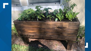 Container garden business booming during the pandemic