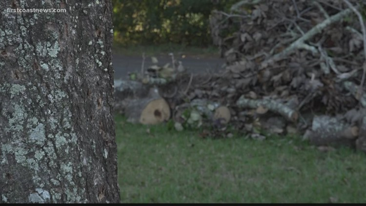 On Your Side: Tree removed from 92-year-old woman's front yard