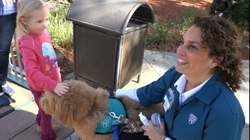 Therapy Animals: More than just a sweet face