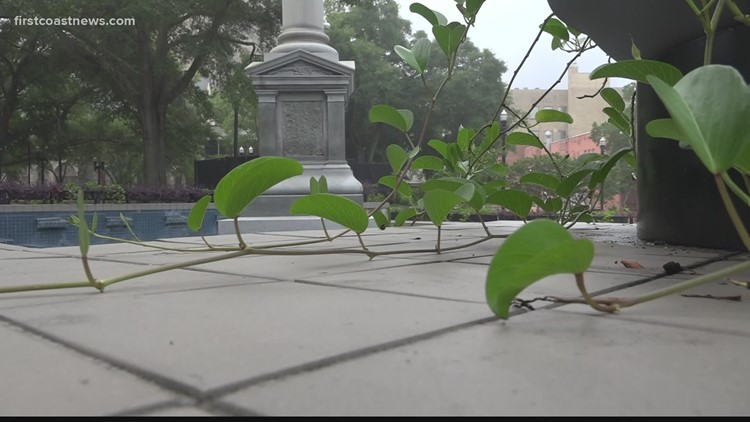 Jacksonville city council member creates legislation to rename Hemming Park