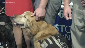 How K9 for Warriors helps veterans struggling with PTSD, suicidal thoughts