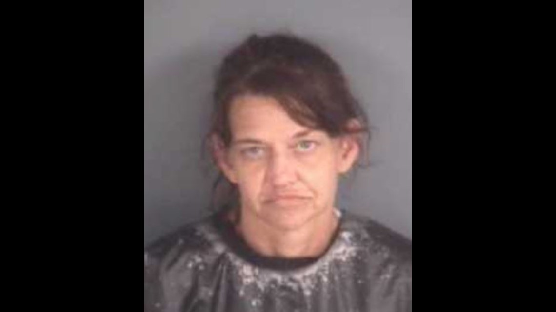 MUGSHOTS: 10 arrested in Middleburg after over 84 grams of meth