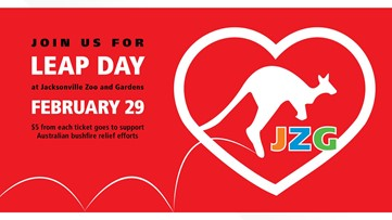Celebrate 'Leap Day' at the Jacksonville Zoo while helping Australian brushfire relief efforts