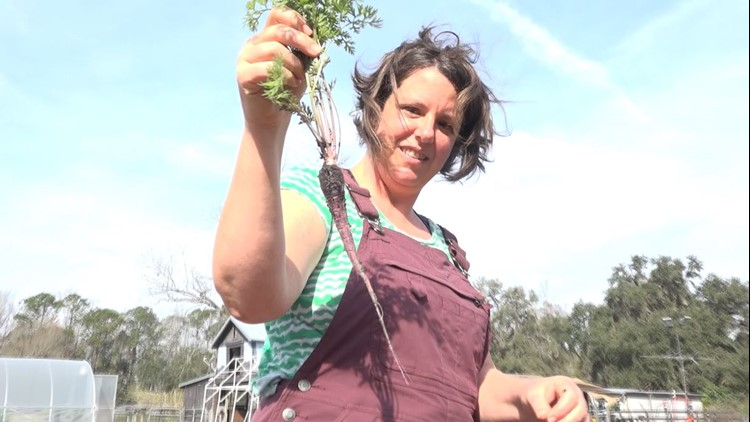 Farming mentorship program offers move toward self-sufficiency during pandemic