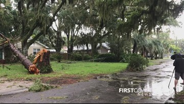 Tree falls on home in Ortega area after Wednesday storms