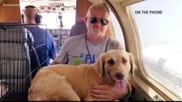 Jacksonville-based organization FUR to the rescue for pets in Bahamas left behind after Hurricane Dorian