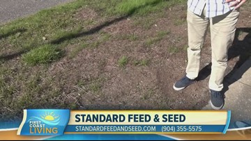 Winterize Your Lawn with Standard Feed & Seed (FCL Nov. 22)