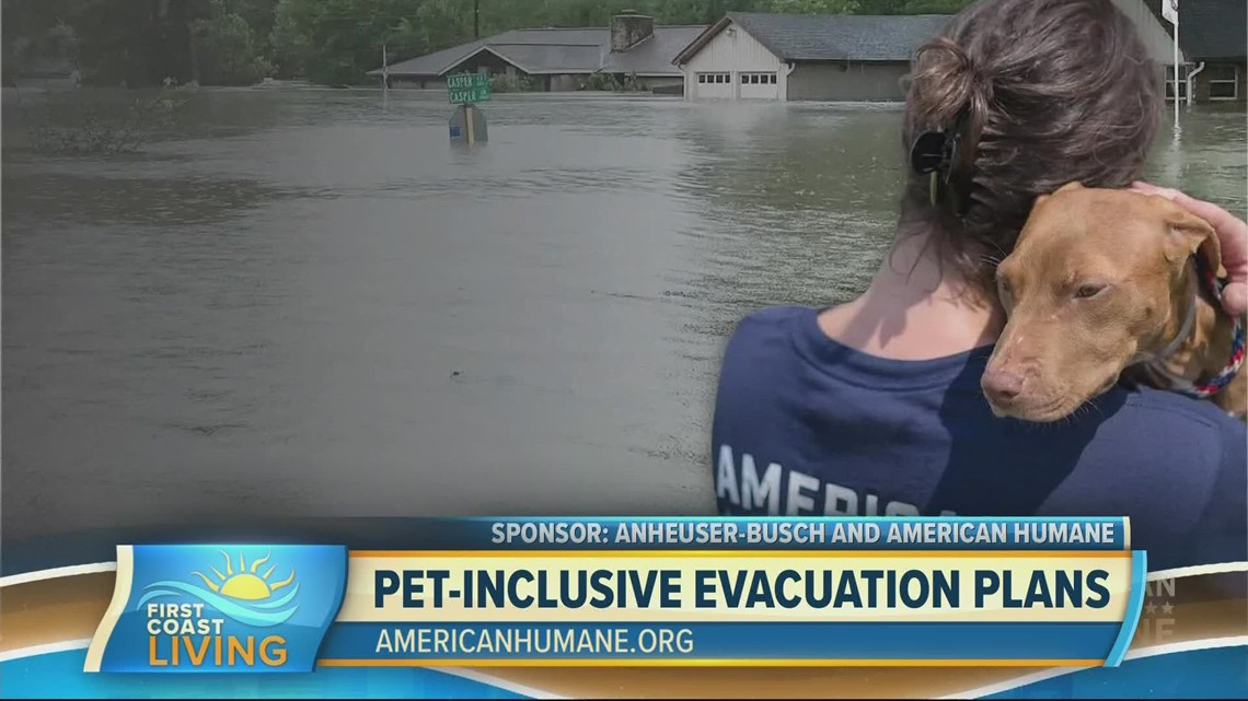 Tips for including pets in your natural disaster plan (FCL Sept. 20, 2021)