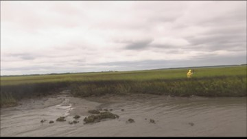 Scientist collect samples near overturned Golden Ray cargo ship in St. Simons Sound