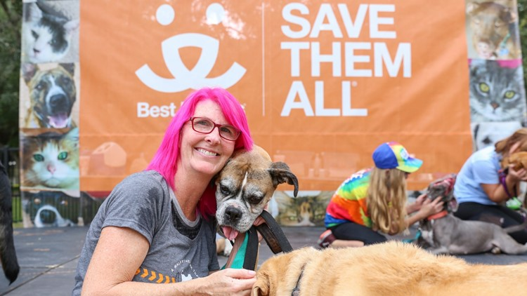 'Strut Your Mutt' around Riverside Saturday to help save homeless pets