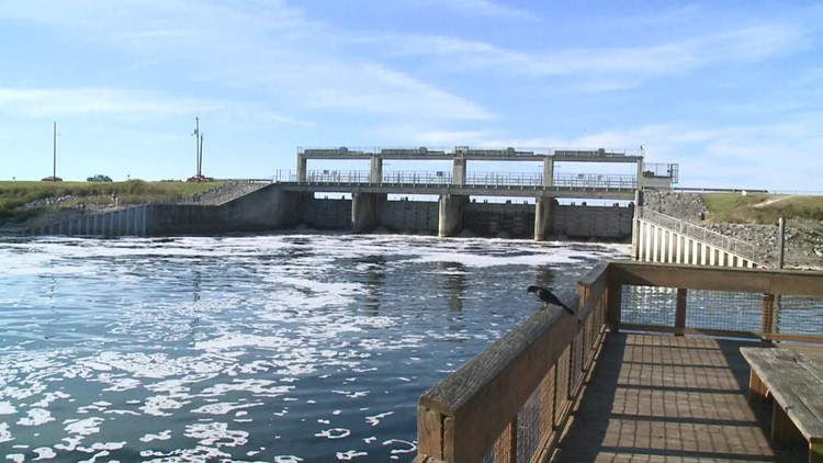 FCN Investigates: Could a leak similar to Piney Point happen in Northeast Florida?
