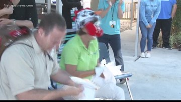 Crowdfunding efforts rewarded in pie or peck contest