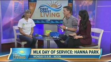 Learn more about MLK Day of Service (FCL January 17th 2020)