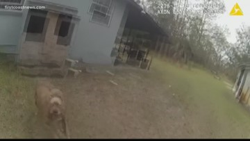 JSO releases body cam footage of officer shooting Jacksonville family's pit bull