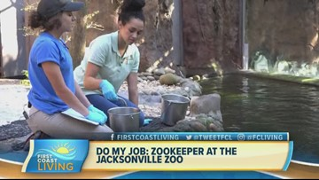 Do My Job: Jacksonville Zoo Keeper (FCL Feb. 18)
